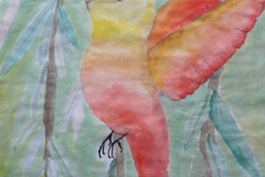 farbfamilien-tiere6
